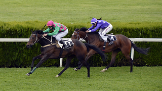 5 Tips When Gambling For The 2020 Kentucky Derby