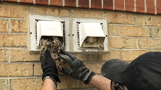 What Happens During A Duct Cleaning Toronto?