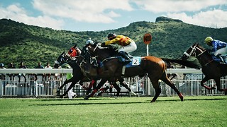 How Do Bookies Make Money? The Bookmakers Business Model