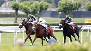 Horse Racing Legends: Top 5 Jockeys in the UK