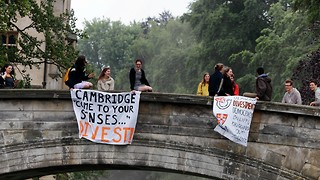 The divestment working group scandal calls into question the very democracy of the University itself