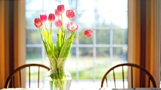 The Tulip Table: a short story