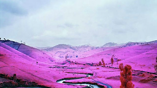 Visualising the Invisible: the photography of Richard Mosse