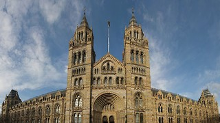 The NHM's new director makes the museum sector's issues plain