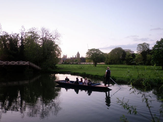 Punting with bats