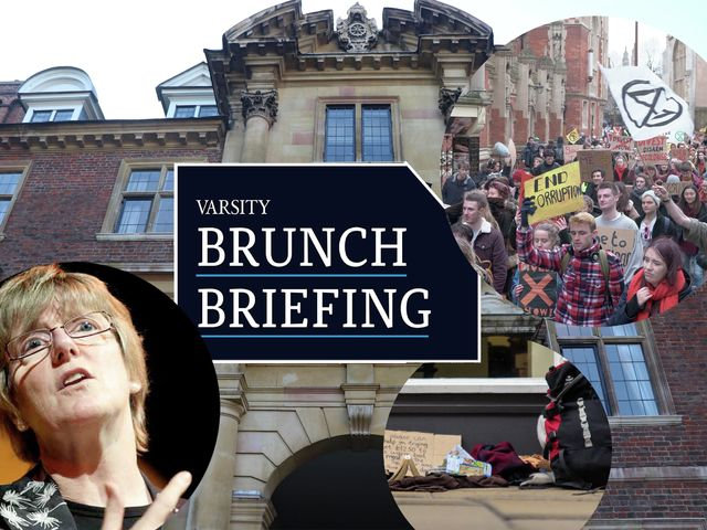 Brunch Briefing - Week 4: A new divestment march, a big donation, and the 'Taylor's Table'