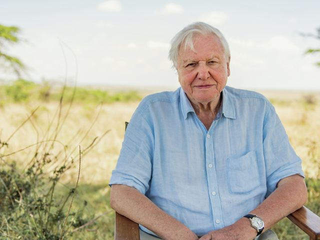 David Attenborough: A Life on Our Planet review — a harrowing look at our climate